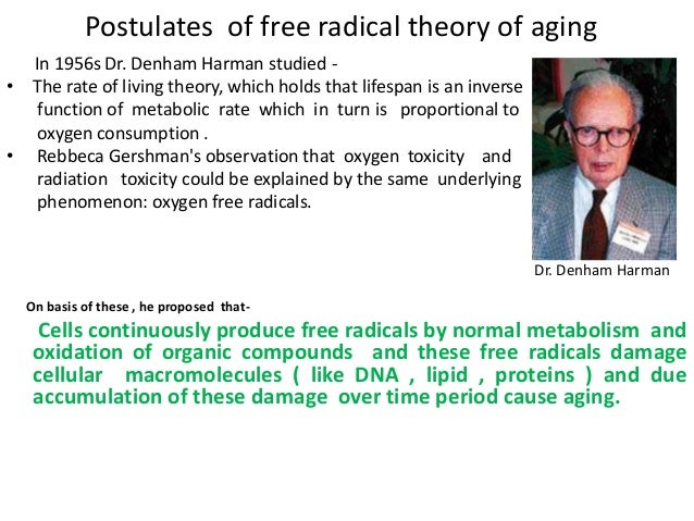 the free radical theory of aging The free radical theory of aging and a look at changes in the hypothalamus - volume 15 issue 1 - j c carlson, m sawada.