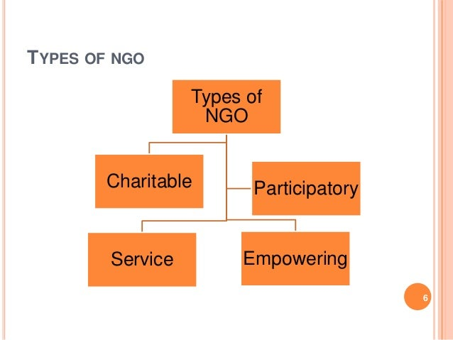 ngos and their role in the In the past few weeks the role of ngos in south ngos in south africa - we deserve better must be permanently open for ngos given their role in support.