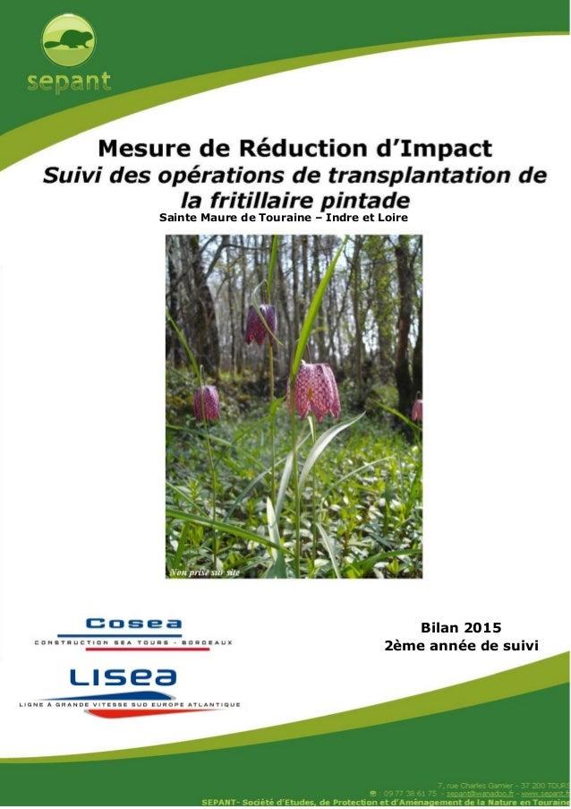 Bilan 2015 2ème année de suivi Sainte Maure de Touraine – Indre et Loire