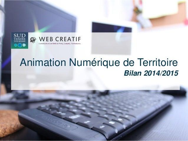 Animation Numérique de Territoire Bilan 2014/2015