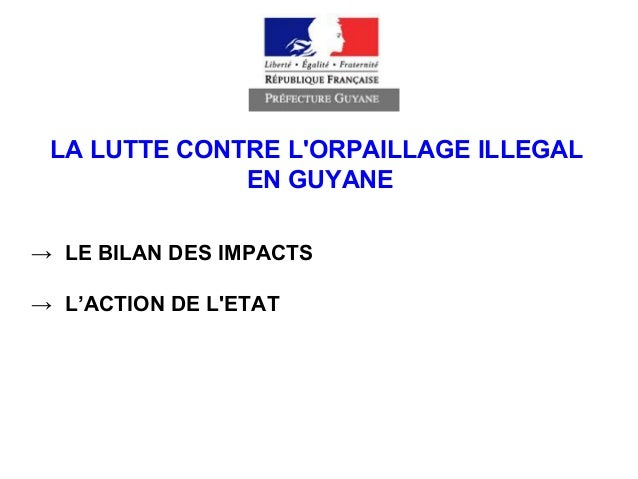 LA LUTTE CONTRE L'ORPAILLAGE ILLEGAL EN GUYANE → LE BILAN DES IMPACTS → L'ACTION DE L'ETAT