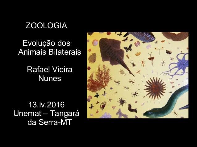 ZOOLOGIA Evolução dos Animais Bilaterais Rafael Vieira Nunes 13.iv.2016 Unemat – Tangará da Serra-MT