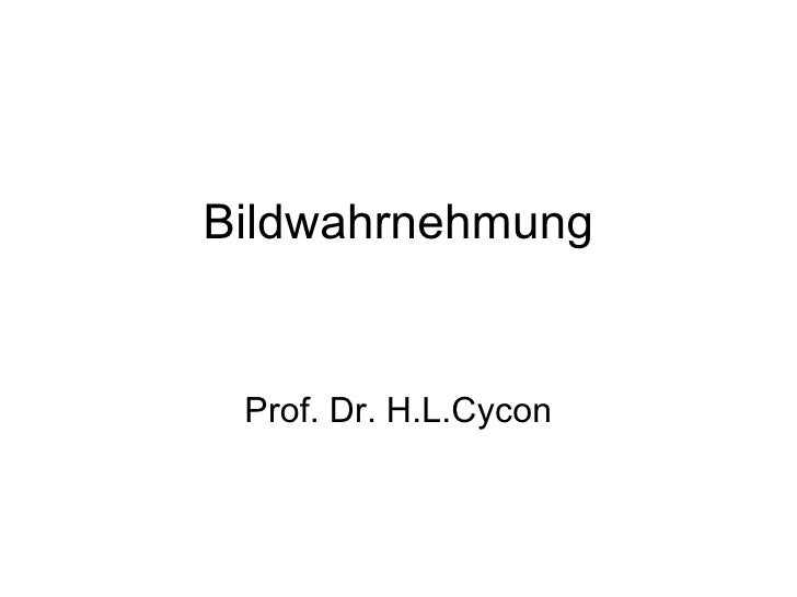 Bildwahrnehmung Prof. Dr. H.L.Cycon