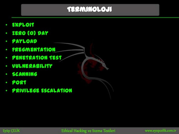 •   Exploit•   Zero (0) Day•   Payload•   Fregmentation•   Penetration Test•   Vulnerability•   Scanning•   Port•   Privil...