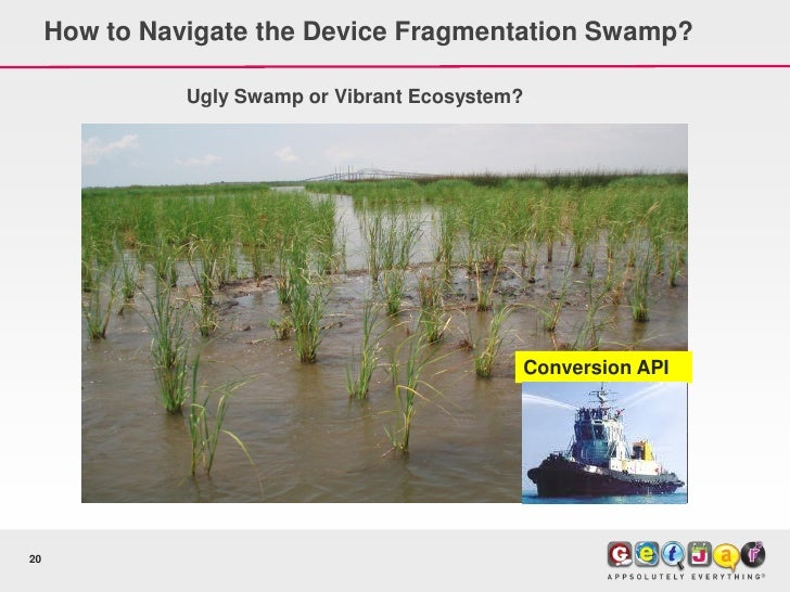 How to Navigate the Device Fragmentation Swamp?                 Ugly Swamp or Vibrant Ecosystem?                          ...