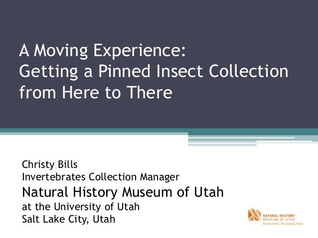 A Moving Experience: Getting a Pinned Insect Collection from Here to There Christy Bills Invertebrates Collection Manager ...