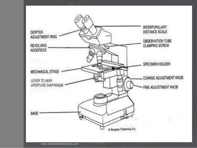 Binoculars microscope /prosthodontic courses