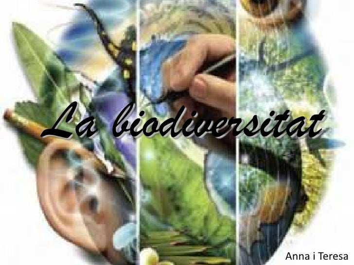 La biodiversitat<br />Anna i Teresa<br />