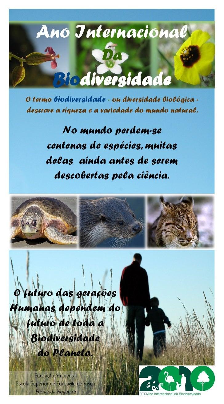 Ano Internacional                          Da               Biodiversidade    O termo biodiversidade - ou diversidade biol...