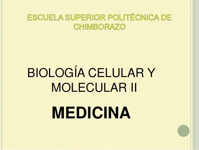 BIOLOGÍA CELULAR Y MOLECULAR II  MEDICINA