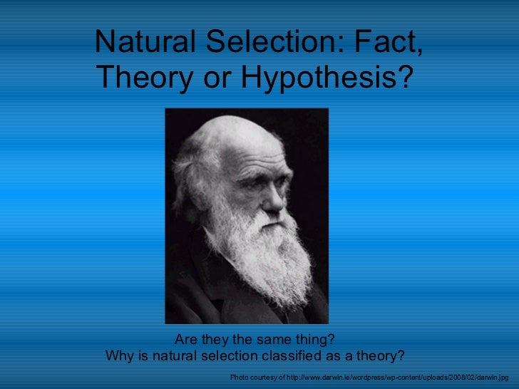 Natural Selection: Fact, Theory or Hypothesis?  Are they the same thing? Why is natural selection classified as a theory? ...