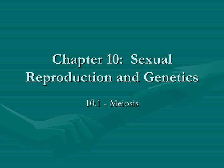 Chapter 10:  Sexual Reproduction and Genetics 10.1 - Meiosis