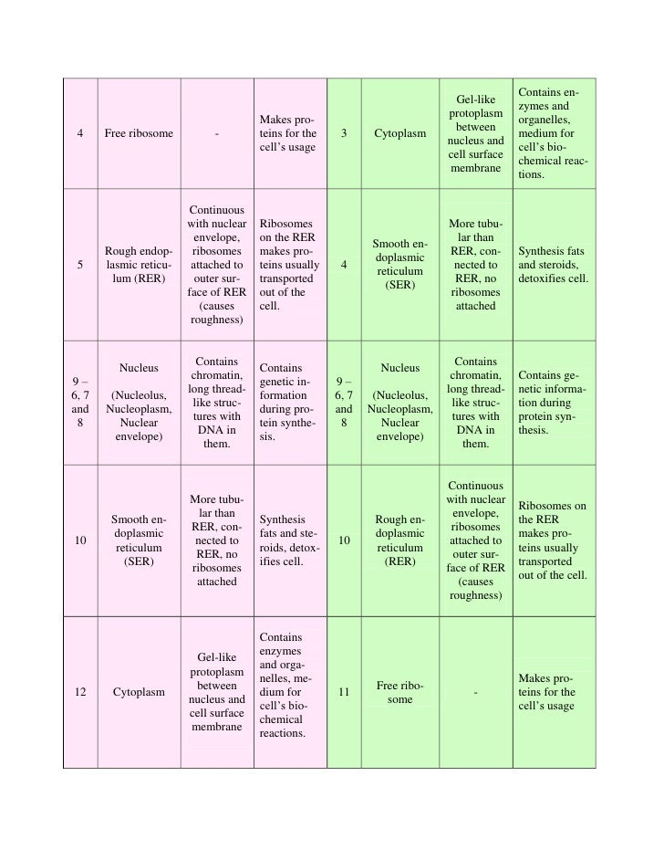 cells and movement of substances Chapter 3 - cells essential questions: how does the structure of the cell relate to its function movement of substances through the cell membrane.