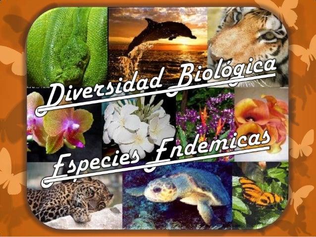 ¿Qué es Diversidad Biológica? La característica de la vida en el planeta tierra, que se manifiesta en todos los niveles, ...
