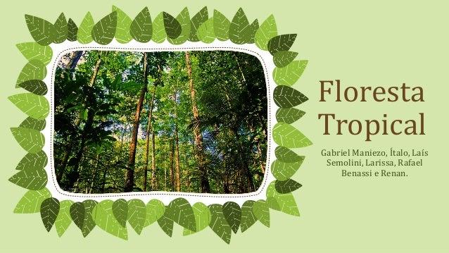 Floresta Tropical Gabriel Maniezo, Ítalo, Laís Semolini, Larissa, Rafael Benassi e Renan.