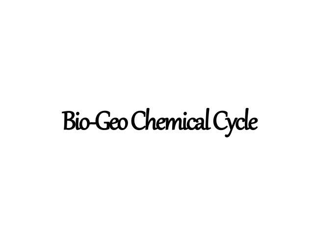 Bio-GeoChemicalCycle