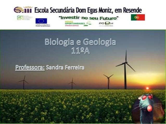 Hídrica e EólicaUm trabalho de:Carla DiasFernando VieiraJoão Pereira11º A 2012/13