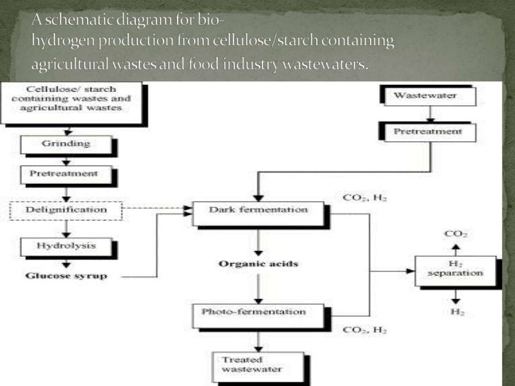 Bio hydrogen production from waste materials