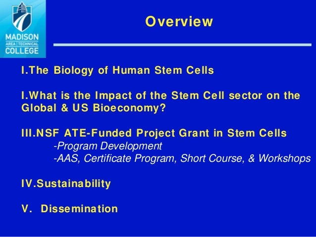 development of stem cell technology biology essay Ib biology 2016 notes on 16 stem cells stem cells understandings: the capacity of stem cells to divide and differentiate along different pathways is necessary in embryonic development and also makes stem cells suitable for therapeutic uses.