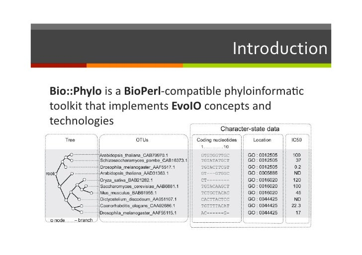 Bio::Phylo - phyloinformatic analysis using perl Slide 2