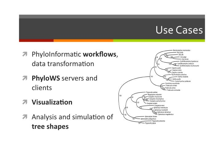 Bio::Phylo - phyloinformatic analysis using perl Slide 3