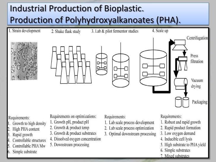 Bio plastic from bacteria