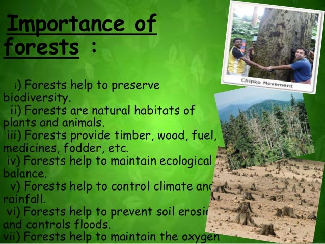 essay upon efficiency associated with natrual enviroment not to mention wildlife