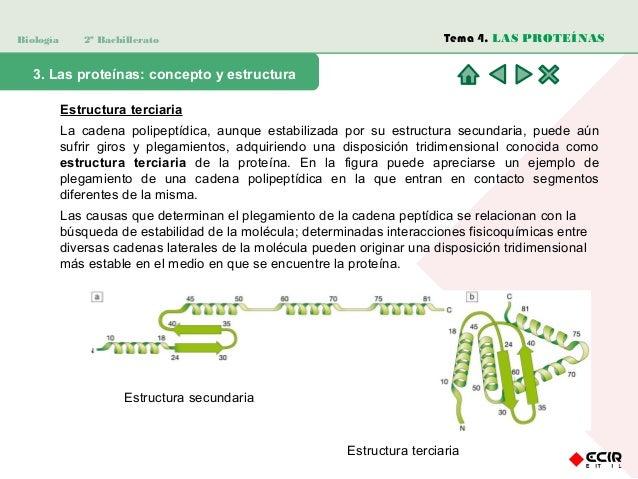 Bio Tema 6 Presentación