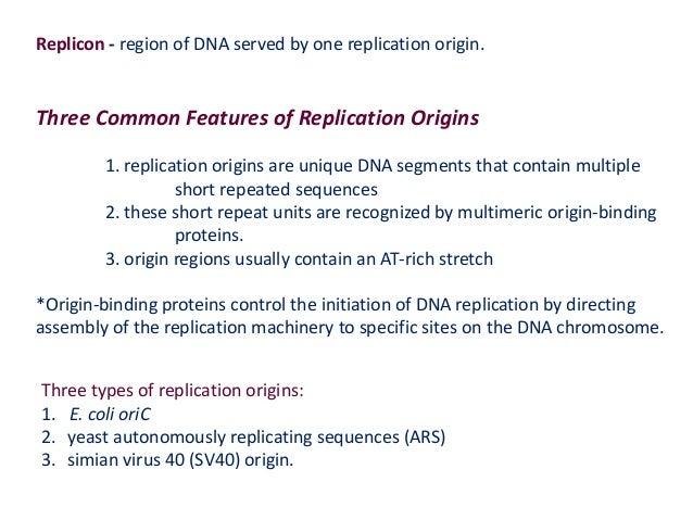 Bio108 Cell Biology lec 5 DNA REPLICATION, REPAIR and