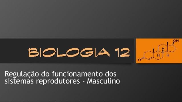 Regulação do funcionamento dos sistemas reprodutores -Masculino