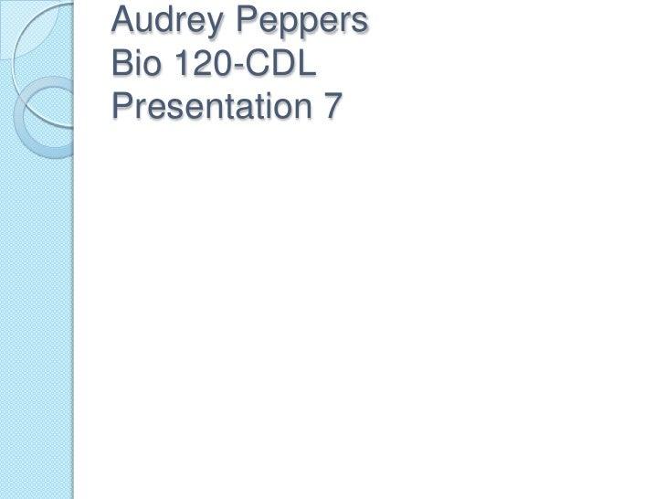 Audrey PeppersBio 120-CDLPresentation 7<br />