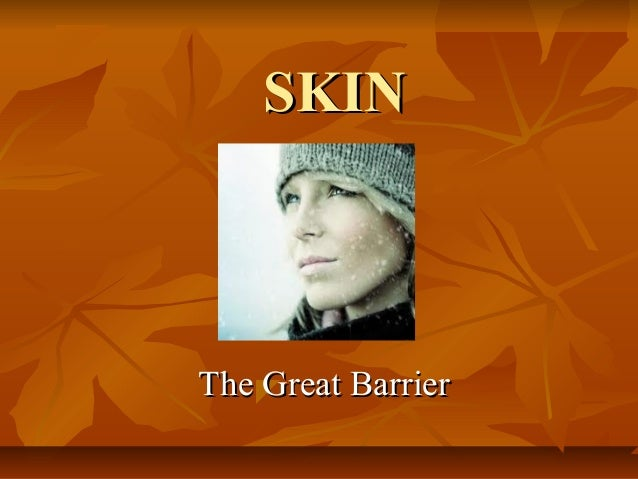 SKIN  The Great Barrier