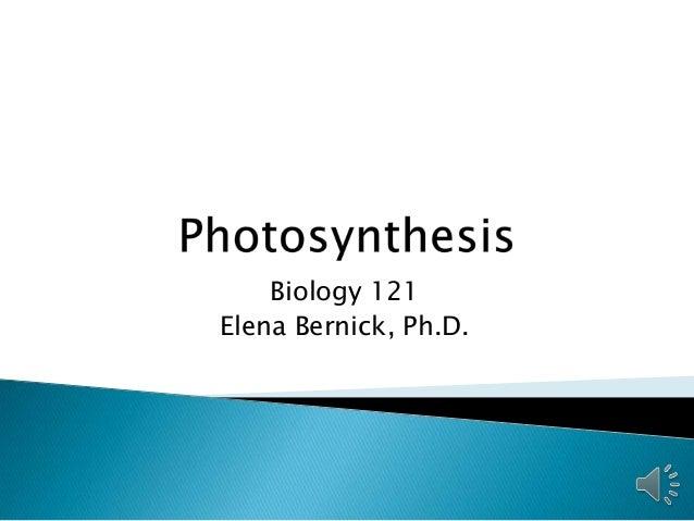 Biology 121 Elena Bernick, Ph.D.