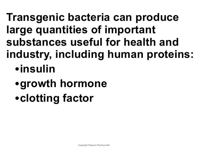 Chapter 13 Lecture- Biotech