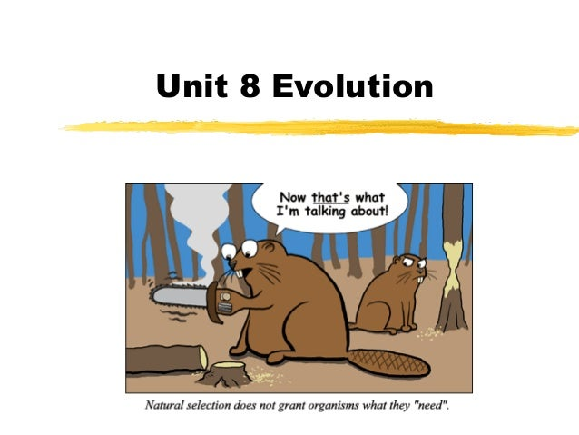 Unit 8 Evolution