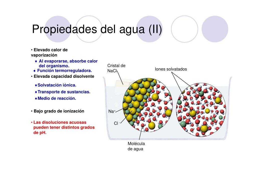 Bio2 1 y 2 agua y sales for Ph piscina bajo consecuencias