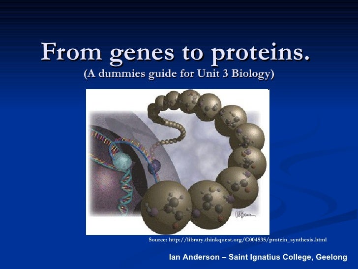From genes to proteins.  (A dummies guide for Unit 3 Biology) Source: http://library.thinkquest.org/C004535/protein_synthe...