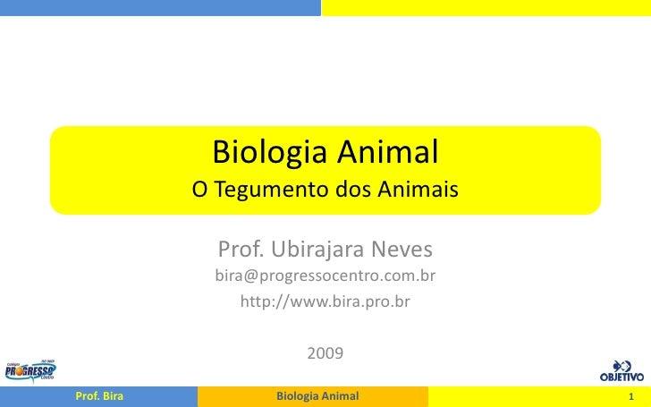 Biologia Animal              O Tegumento dos Animais                 Prof. Ubirajara Neves               bira@progressocen...