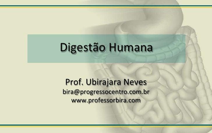 Digestão Humana  Prof. Ubirajara Neves bira@progressocentro.com.br    www.professorbira.com