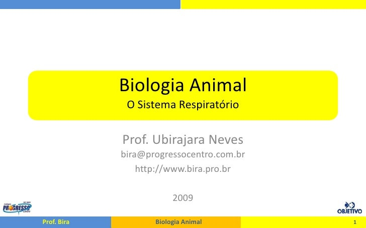 Biologia Animal               O Sistema Respiratório               Prof. Ubirajara Neves              bira@progressocentro...