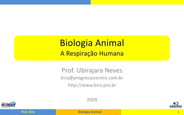 Biologia Animal              A Respiração Humana               Prof. Ubirajara Neves              bira@progressocentro.com...
