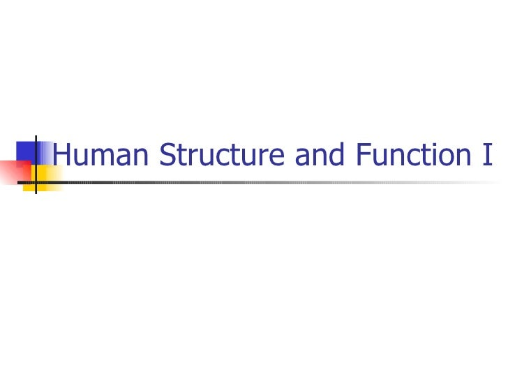 Human Structure and Function I