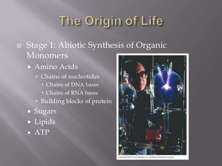    Stage 1: Abiotic Synthesis of Organic    Monomers       Amino Acids         Chains of nucleotides           Chains ...