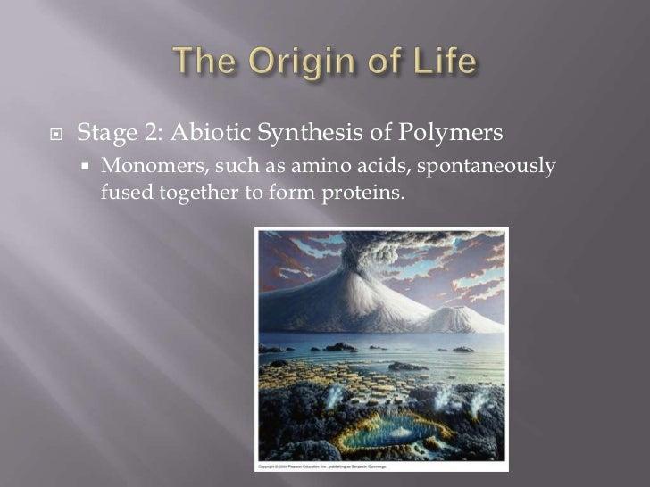 Bio 40s evolution