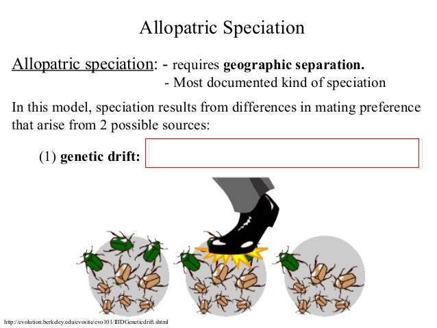 Bio413 07 Sympatric Speciation Species Concepts Allopatric