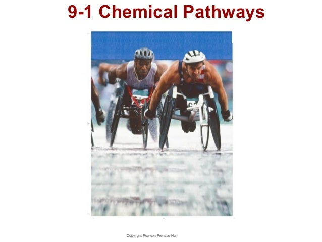 9-1 Chemical Pathways  Copyright Pearson Prentice Hall