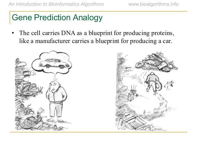Bioalgo 2012 01 gene prediction sim 23 malvernweather Gallery