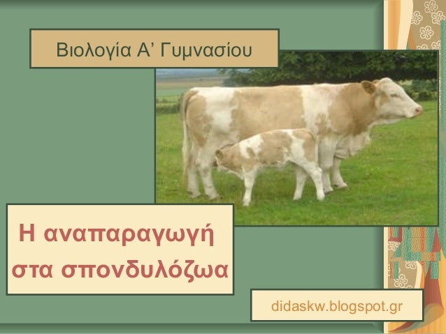 Βιολογία Α' ΓυμνασίουΗ αναπαραγωγήστα σπονδυλόζωα                           didaskw.blogspot.gr