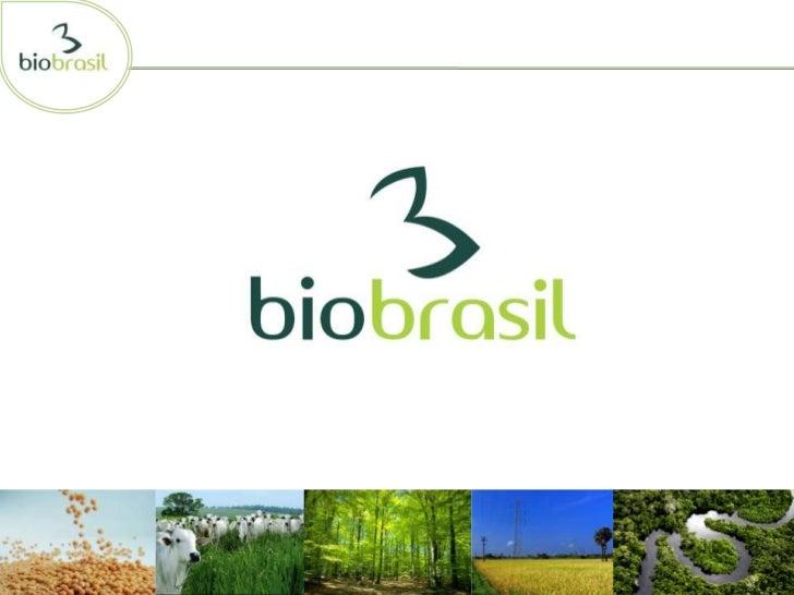 • Biobrasil nasceu da Aliança da Terra• Cadastro sócio ambiental e compromisso de adequação• Não adianta emprestar dinheir...