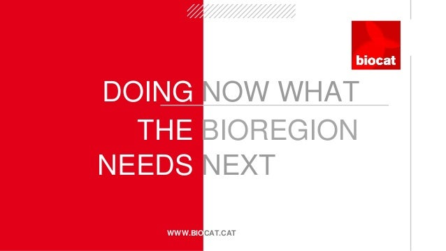 DOING NOW WHAT WWW.BIOCAT.CAT NEEDS NEXT THE BIOREGION